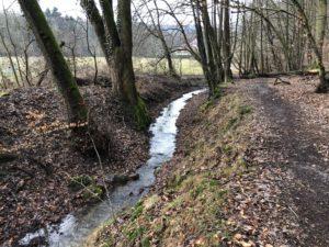Herzliche Einladung zur offiziellen Einweihung des wiederbewässerten Mühlgrabens und des neuen Einleitungsbauwerkes